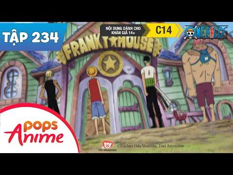 One Piece Tập 234 - Sự Giúp Đỡ Của Nhóm - Cuộc Tấn Công Nhà Franky - Phim Hoạt Hình - Thời lượng: 22:49.