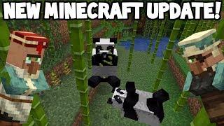 Next Minecraft UPDATE! (Village & Pillage)
