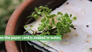 video thumbnail Paper Garden Art Card youtube