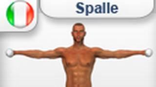 alzate laterali con i pesi - esercizi allenamento per spalle deltoidi palestra o casa