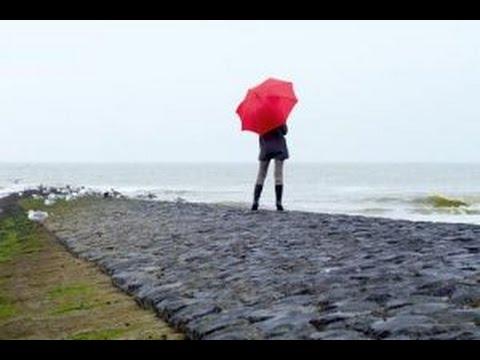 K-Tipp-Test: Regenschirme