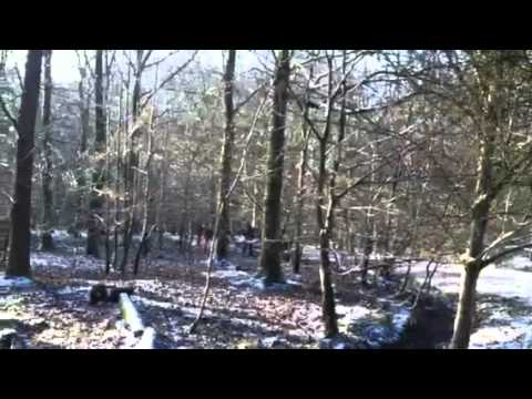 Mitsubishi Rally Car Crash – Wyedean Rally 2012