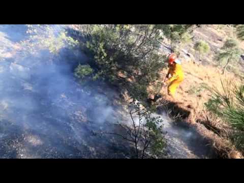 Milas'ta yangın böyle söndürüldü