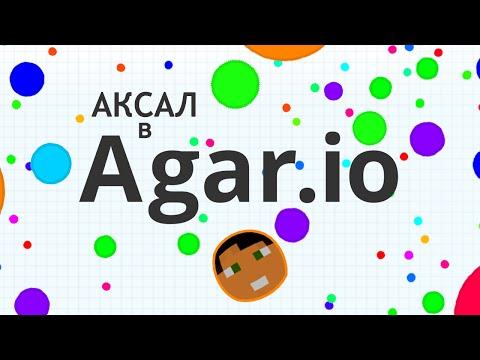 Аксал B Agar.io