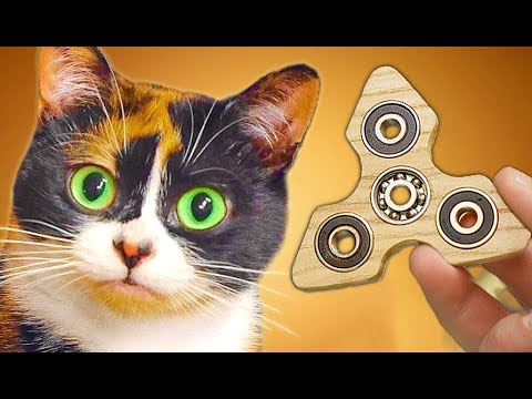 Made a FIDGET SPINNER for CAT (видео)