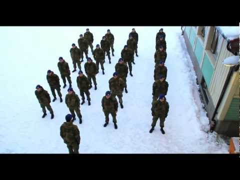 Army - COPYRIGHT© Shout out to Baauer - Harlem Shake. THIS IS THE ORIGINAL NORWEGIAN ARMY SHAKE! Harlem shake. Army style. Awesome Gif: http://zwierzodudle.tumblr.c...