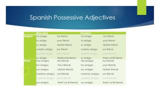 Here we break down how to use possessive adjectives in Spanish (my, your, his, her, their, you all's, etc.)