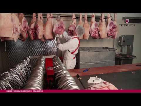 VICTORINOX Berufs-/Metzgermesser im Einsatz bei der Schweinefleisch-Verabeitung