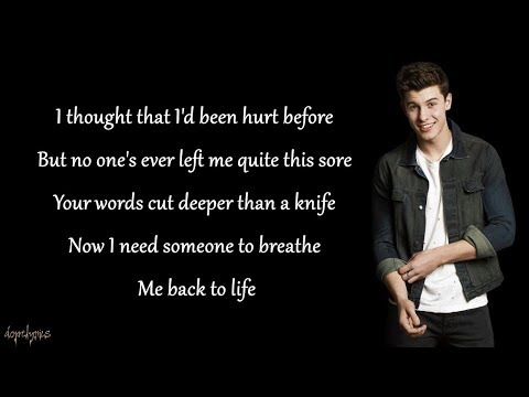 Stitches - Shawn Mendes (Lyrics)
