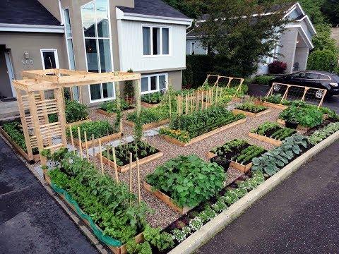, title : 'gardening ideas - raised garden beds designs ideas'