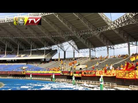 Hinchada del deportivo Pereira vs Valledupar 2015 - Lobo Sur - Pereira