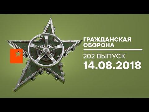 Гражданская оборона – выпуск от 14.08.2018 - DomaVideo.Ru