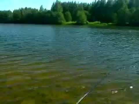 рыбалка на нерли тверская область видео