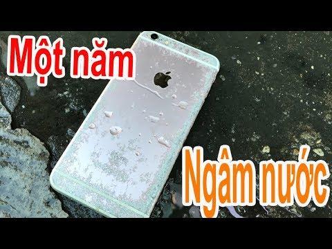 Thử khởi động iphone sau 1 năm rơi nước - cái kết sẽ NTN - Thời lượng: 20:19.