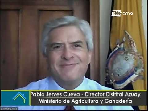 Vinculación de productores a mercados y supermercados de Cuenca