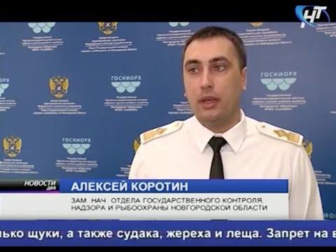 На водоемах Новгородской области вступили в силу весенние запреты