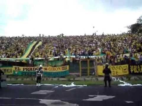 Fortaleza Leoparda Sur 2003; Atl. Bucaramanga vs America; Copa Mustang I Fecha 15 - Fortaleza Leoparda Sur - Atlético Bucaramanga