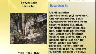 SEYYID SALIH HAZRETLERİ HAZRETLERİ (YOLUMUZU AYDINLATANLAR)