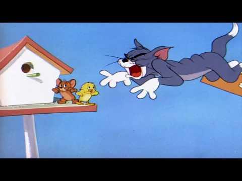 Tom y Jerry en Español | Super Flying Tom | Dibujos animados para niños - Thời lượng: 3 phút.