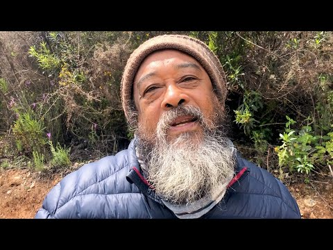 Mooji Moment: Life Beyond Mind