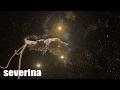 Spustit hudební videoklip SEVERINA - HUREM