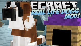 Minecraft   REAL LIFE DOGS MOD!! (Puppies, Kennels&More!)   Mod Showcase