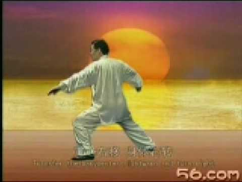 视频:陈式老架一路24掩手肱锤 Chen xian wang Chen's TaiJiQuan step-by-step teach 24