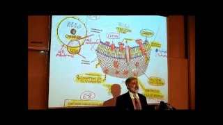 ANATOMY; REVIEW OF CYTOLOGY; PART 2 By Professor Fink