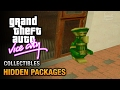GTA Vice City - Hidden Packages [City Sleuth Trophy / Achievement]