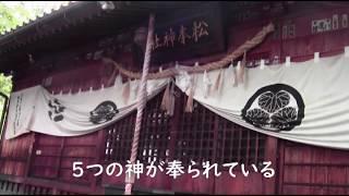 みんなで行こう!松本神社