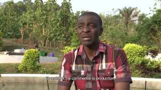 Programme de production et de distribution de spiruline d'Antenna Technologies France à Agou Nyogbo au Togo Réalisation: ...