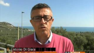 Ordine Psicologi della Puglia
