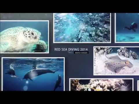 Red Sea Diving 2014