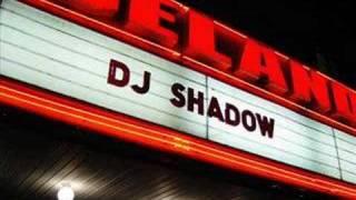 DJ Shadow - Organ Donar