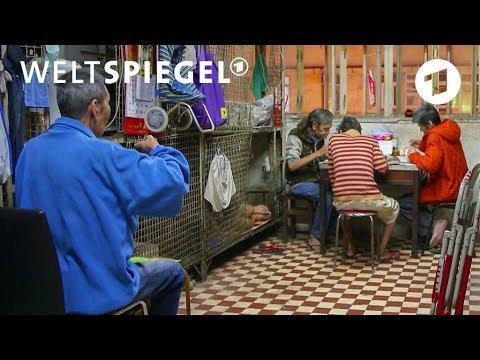 Käfigmenschen in Hongkong | Weltspiegel