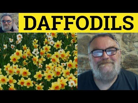 Daffodils - Daffodils by William Wordsworth - Reading - ESL British English Pronunciation