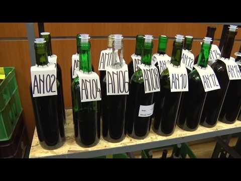 Staré Město - Tradiční košt vín