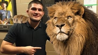 Video Khabib Nurmagomedov 'childhood dream' To Africa | UFC Champ In Nigeria Building Wells MP3, 3GP, MP4, WEBM, AVI, FLV Desember 2018