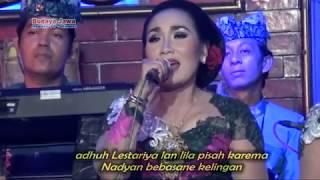 Video KADUNG TRESNO~ DEWIWATI~GUYON MATON PERCIL 17 MARET 2017 MP3, 3GP, MP4, WEBM, AVI, FLV Oktober 2018