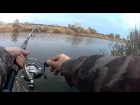 подводное видео ловли на отводной поводок