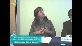 Aplicación de las Normas Internacionales de Auditoría (NIA)