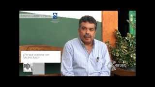 Sinergia en la innovación de procesos en la industria - IIE - INEEL