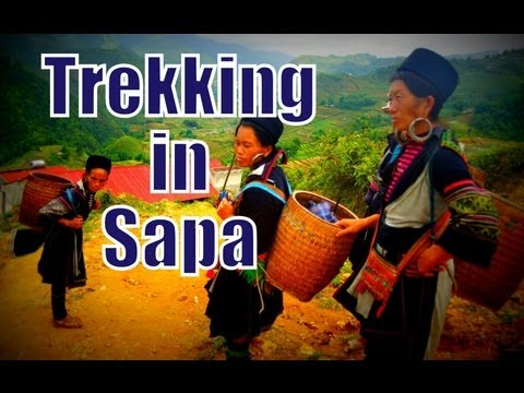 Dzay Tribe Hike to Ta Van Village in the Sapa Regional travel video
