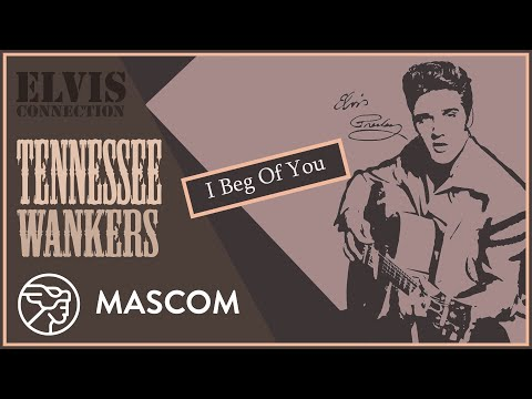 "Tennessee Wankers: ""Elvis Connection"" - praznik za ljubitelje rokabili zvuka"