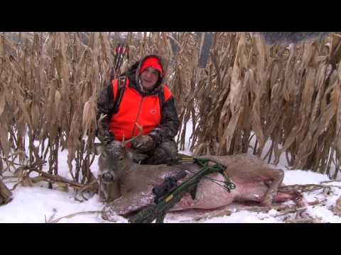 SHOT OF THE WEEK - Whitetail With A Crossbow