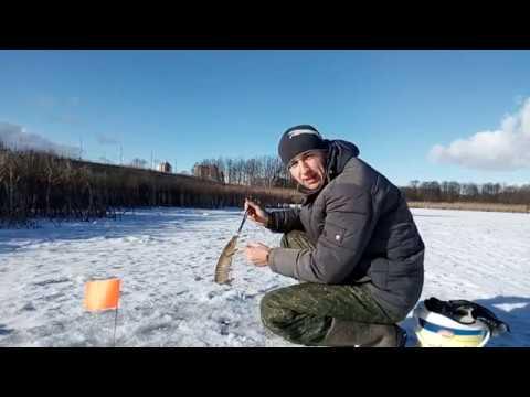 рыбалка в бресте на мухавце видео