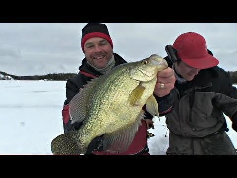 TagTeaming Huge Crappie HD – Uncut Angling – January 12, 2013