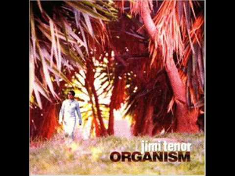 Jimi Tenor - My mind (from the album Organism) online metal music video by JIMI TENOR