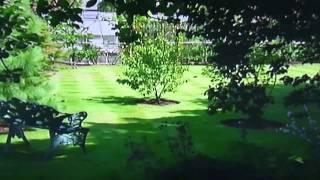 Как самому создать Английский сад