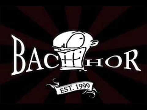 Tekst piosenki Bachor - Skinhead hooligirl po polsku